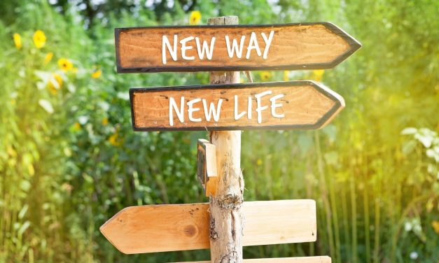 Wat is er nieuw en wat wil je nieuw?